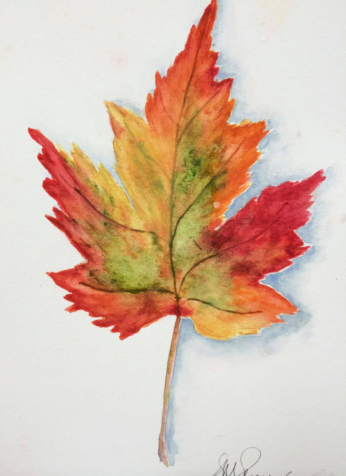 Autumn Leaves Watercolor Sini Ezer Arbres En Aquarelle