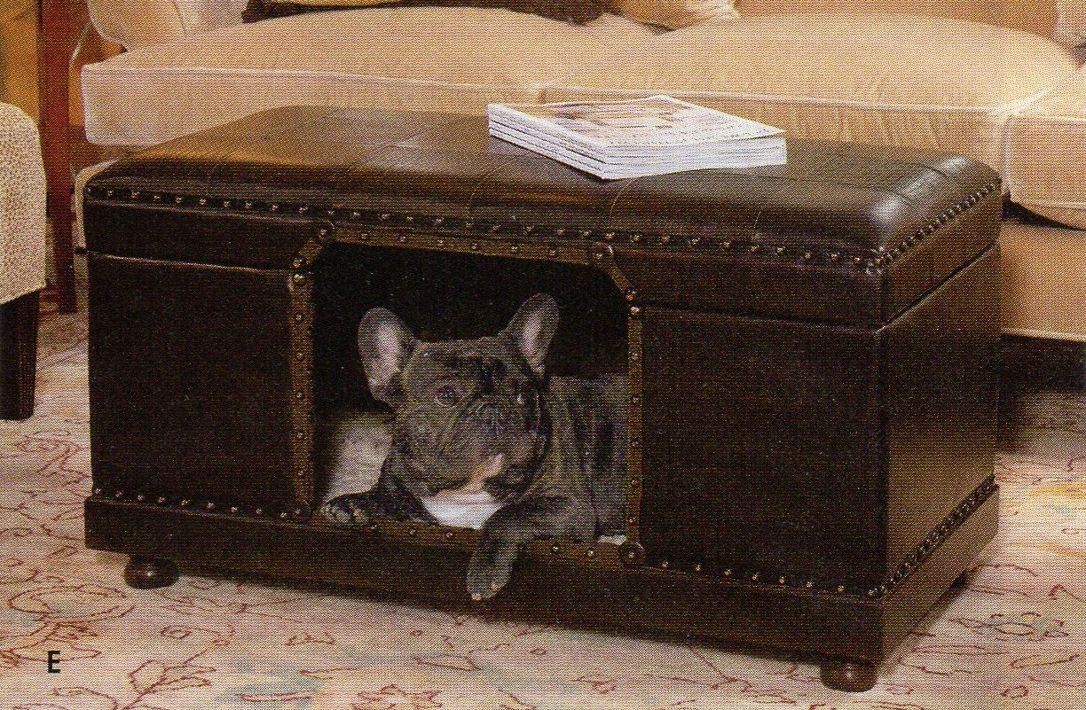 Pet Ottoman House Pets Pinterest Pets Cool Pets And