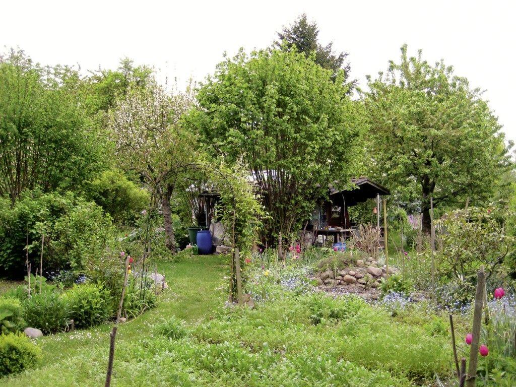Naturgarten gardening plants pinterest mein garten for Naturgarten gestalten