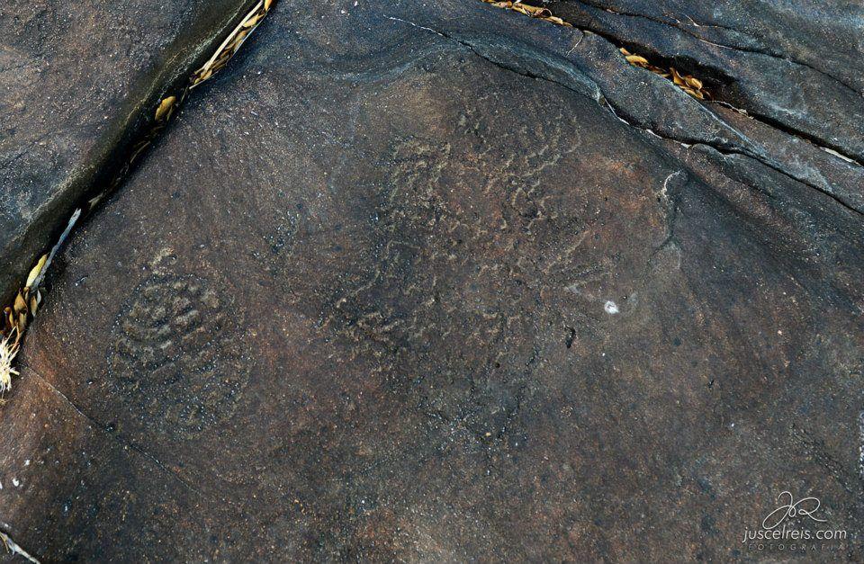 Gravuras itacoatiaras na região do Canyon do Rio Poti (PI). Foto de Juscel Reis.