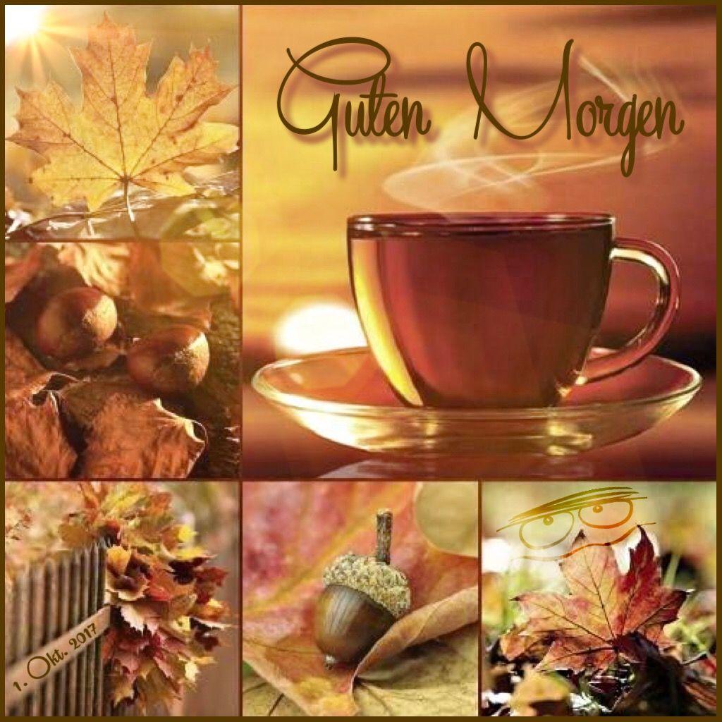 Guten Morgen Herbst Herbstgefühl Und Herbstbilder