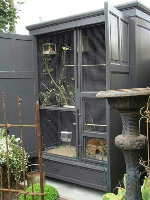 Wardrobefantastic Pet bird cage, Diy bird cage, Bird