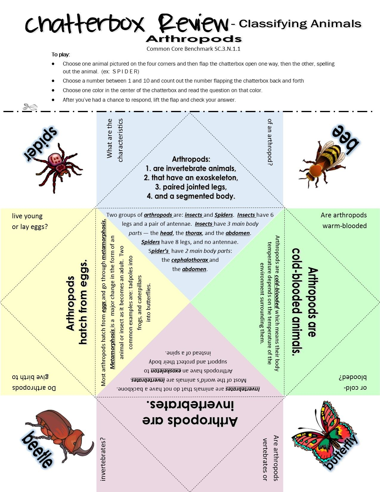 Classifying Animals Classifying Animals Secondary Science Homeschool Learning
