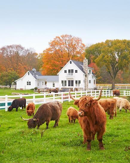 House Tour: Dream Acres Farmhouse in Michigan