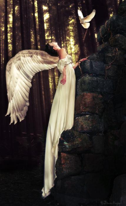 Angel sau Demon Dating Site Reviews)