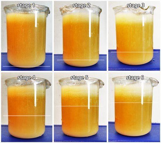 Liposomal Vitamin C How to make this at home recipe | Life