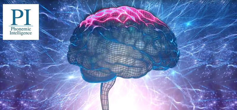 Exclusive Brain Enhancement Training camp for students
