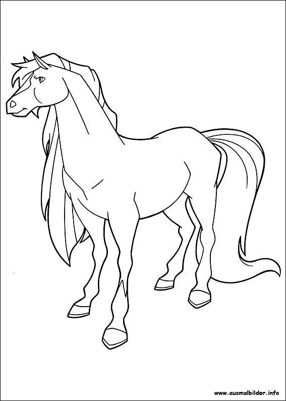 Horseland Malvorlagen Ausmalbilder Ausmalen Pferdezeichnungen