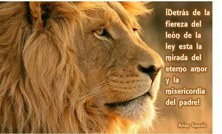 ALELUYA AL LEON DE LA TRIBU DE JUDA...   Reflexio   Pinterest   La ...