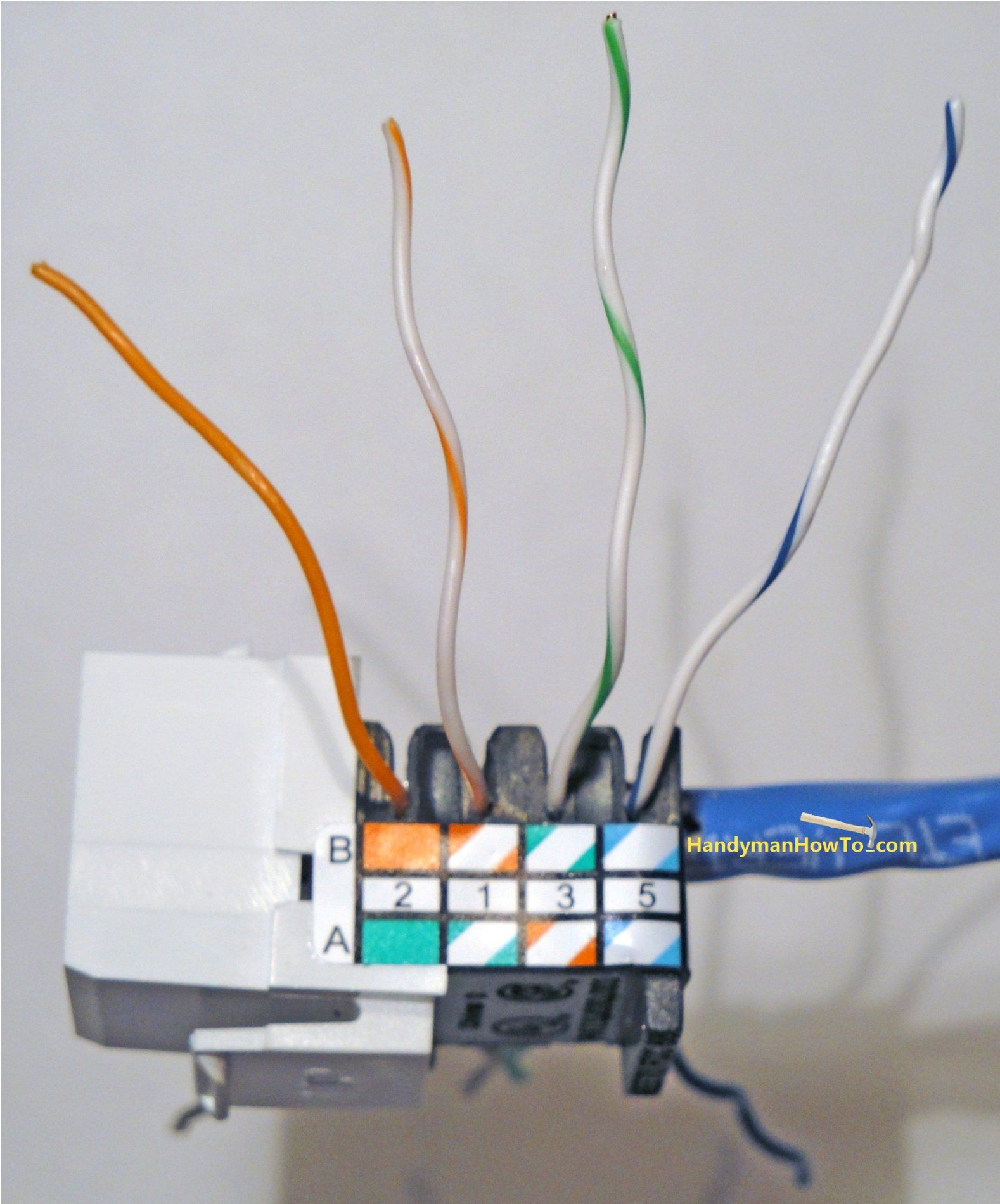 Cat5e Jack Punchdown Right Side Home network
