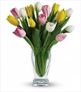 Did You Know That Tulip Bulbs Are Edible They Can Substitute For
