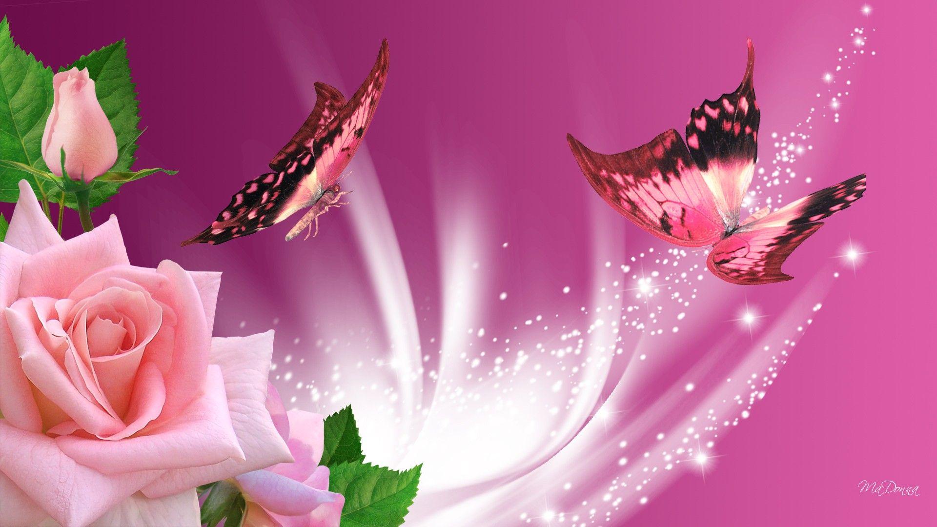 pinkbutterfliesroses221561.jpg (1920×1080) Butterfly