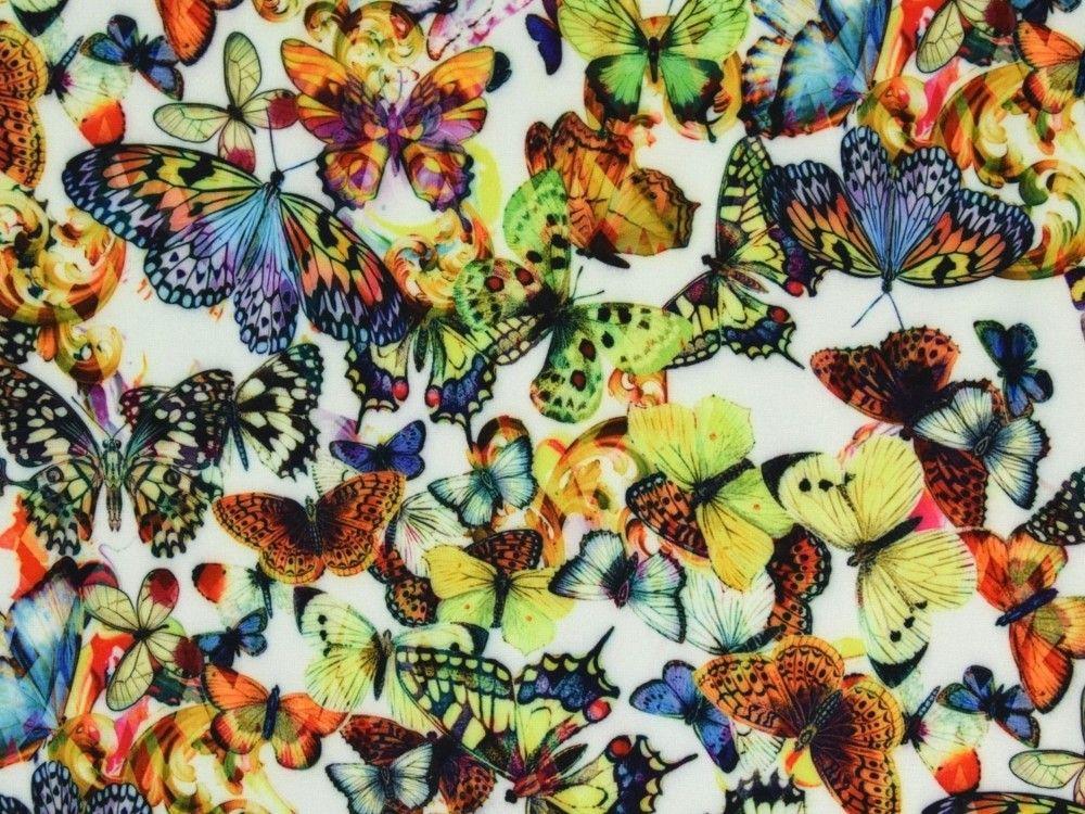 Kuschel Sweatshirt Schmetterlingsfamilie Wollweiss Stoffe Hemmers