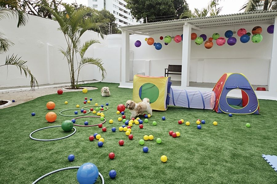 Amazing reasons to think about installing artificial grass