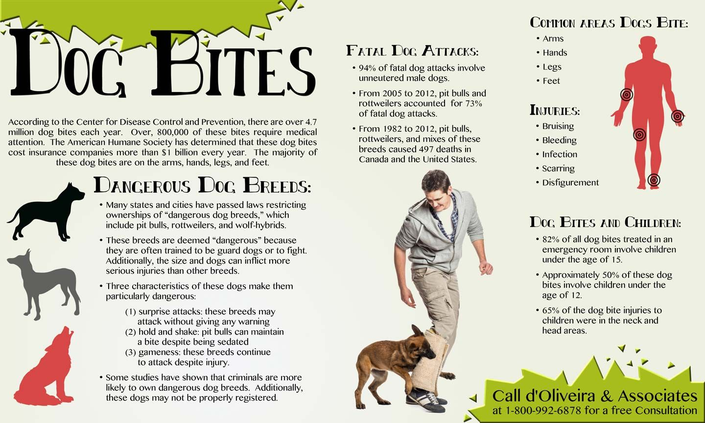 Dog Bites Infographic Dog Biting Dog Bite Prevention Dog