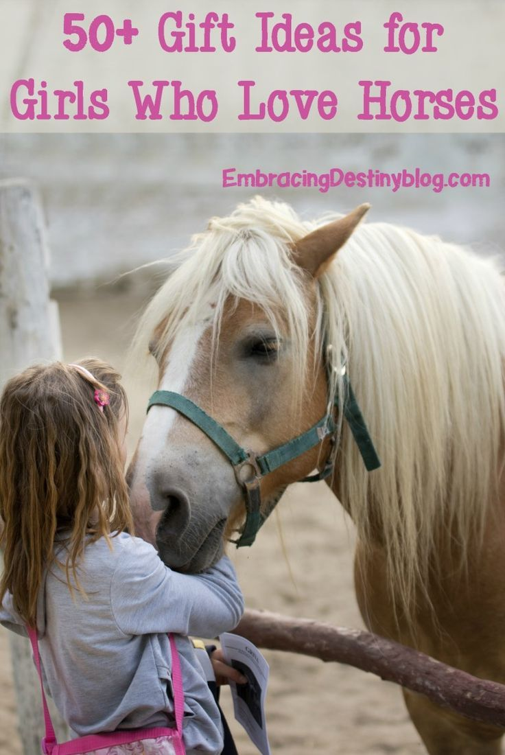 Ideal Gifts For Girls Who Love Horses Birthday Gifts For