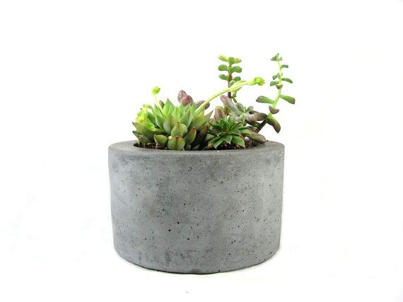 Round Concrete Planter Etsy In 2020 Concrete Planters