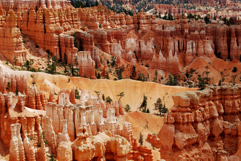 Bryce Canyon Utah National Park Landscape Photography Desert Landscape Desert Decor Gift For Hiker And Backpacker Digital Download In 2020 Bryce Canyon Desert Landscaping Desert Decor