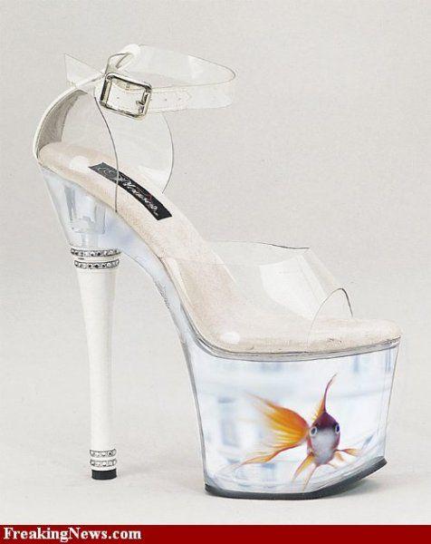 High heel fish tank fish tanks pinterest fish tanks for Fish tank shoes