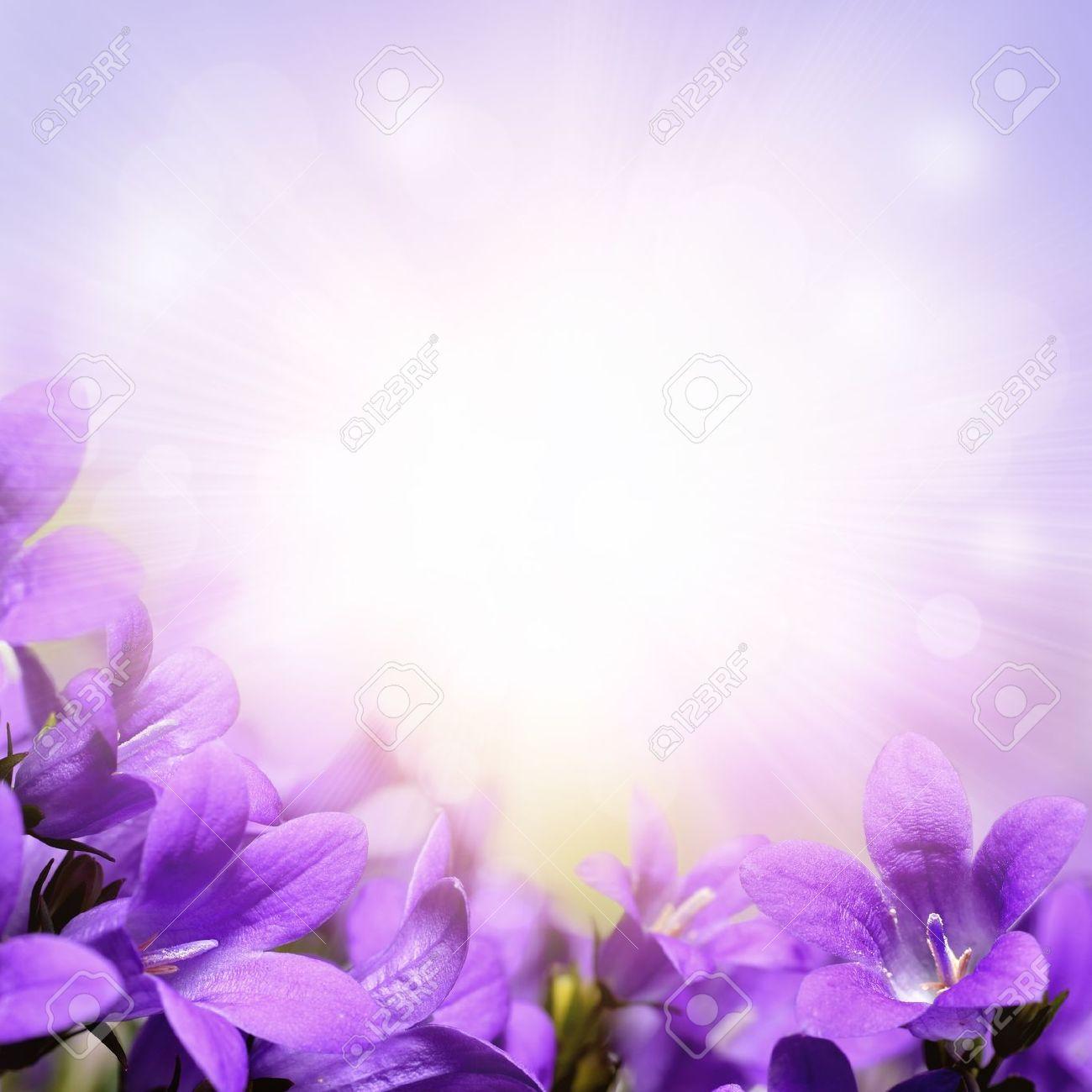 Lavender Background Wedding -Wedding Invitation Border
