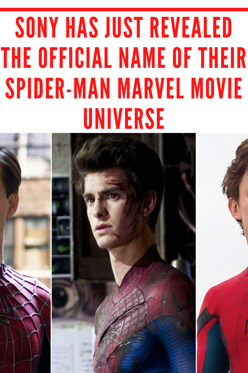 The official Spider-Man movie profile has announced the offer they have with Amazon Prime that you own all the movies with three different Spider-Men. In that post, he also gave the official title of his Spider-Man Marvel movie universe. #spiderman #marvel #avengers #tomholland #ironman #marvelcomics #peterparker #captainamerica #mcu #comics #spidermanfarfromhome #thor #hulk #cosplay #spidey #avengersendgame #venom #batman #spiderverse #blackwidow #spidermanhomecoming #endgame #tonystark #thanos