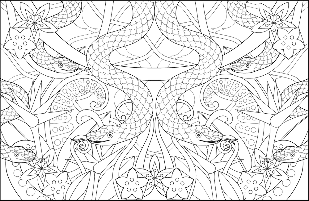 Snakes By Joanna Webster From The Creative Colouring Book Snakes Jungle Ferns Geometric Colouring Snake Coloring Pages Coloring Pages Colouring Pages