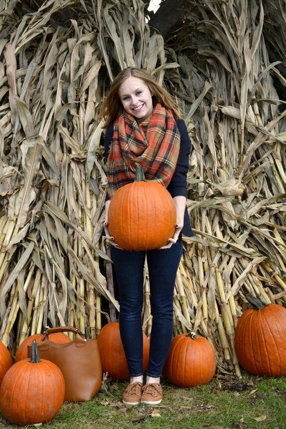 Tiptoeing Through the Pumpkin Patch - Sed Bona