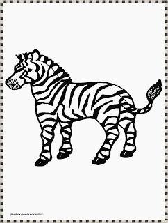 Mewarnai Gambar Zebra Kartun Zebra Gambar