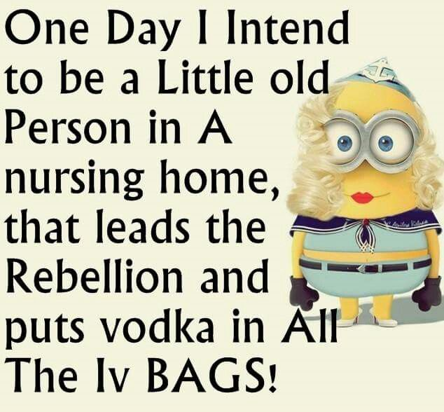 Grow Old Disgracefully Minions Funny Funny Minion Quotes Minion Quotes