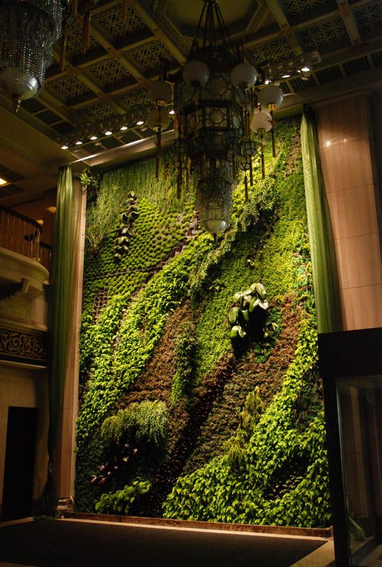 "A stunning ""living wall"" by vertical garden designer Patrick Blanc takes our breath away. This installation at the National Theater in Taipei is called ""Butterfly Dance""."