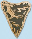 Shark Tooth - Hammerhead Project Pattern