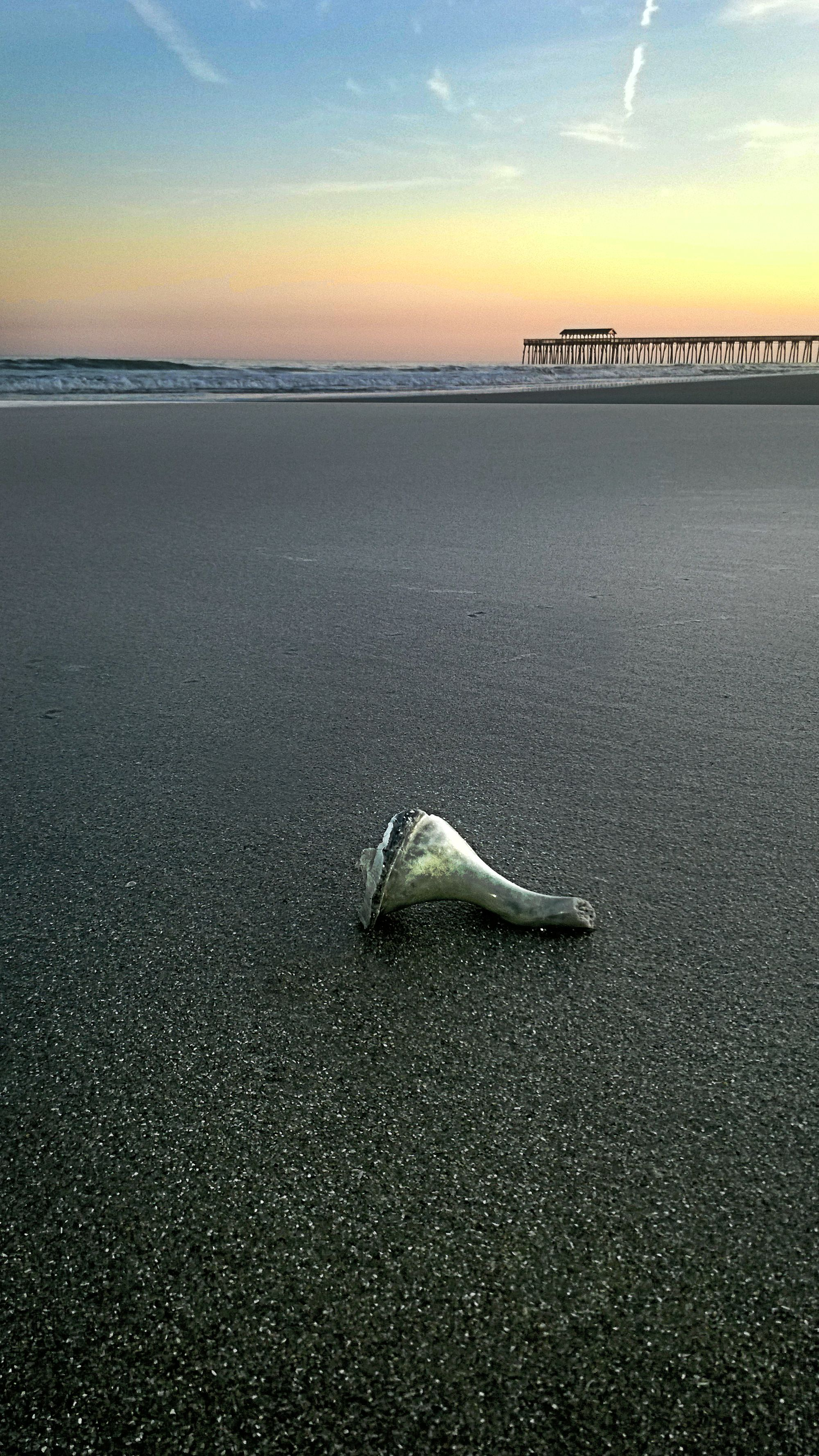 Peaceful Myrtle Beach, South Carolina Looking north