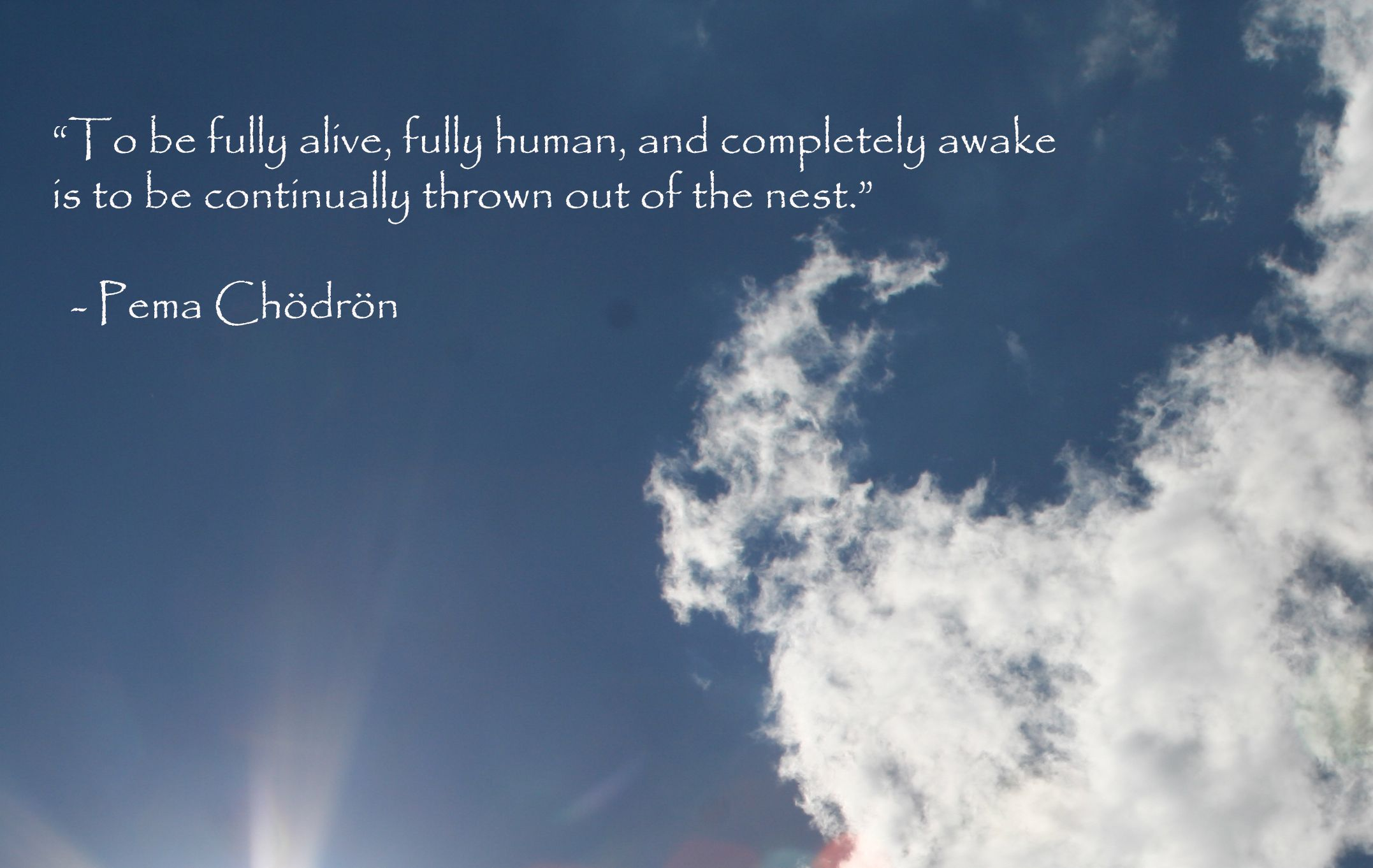 To Be Fully Alive Fully Human And Completely Awake Is To Be