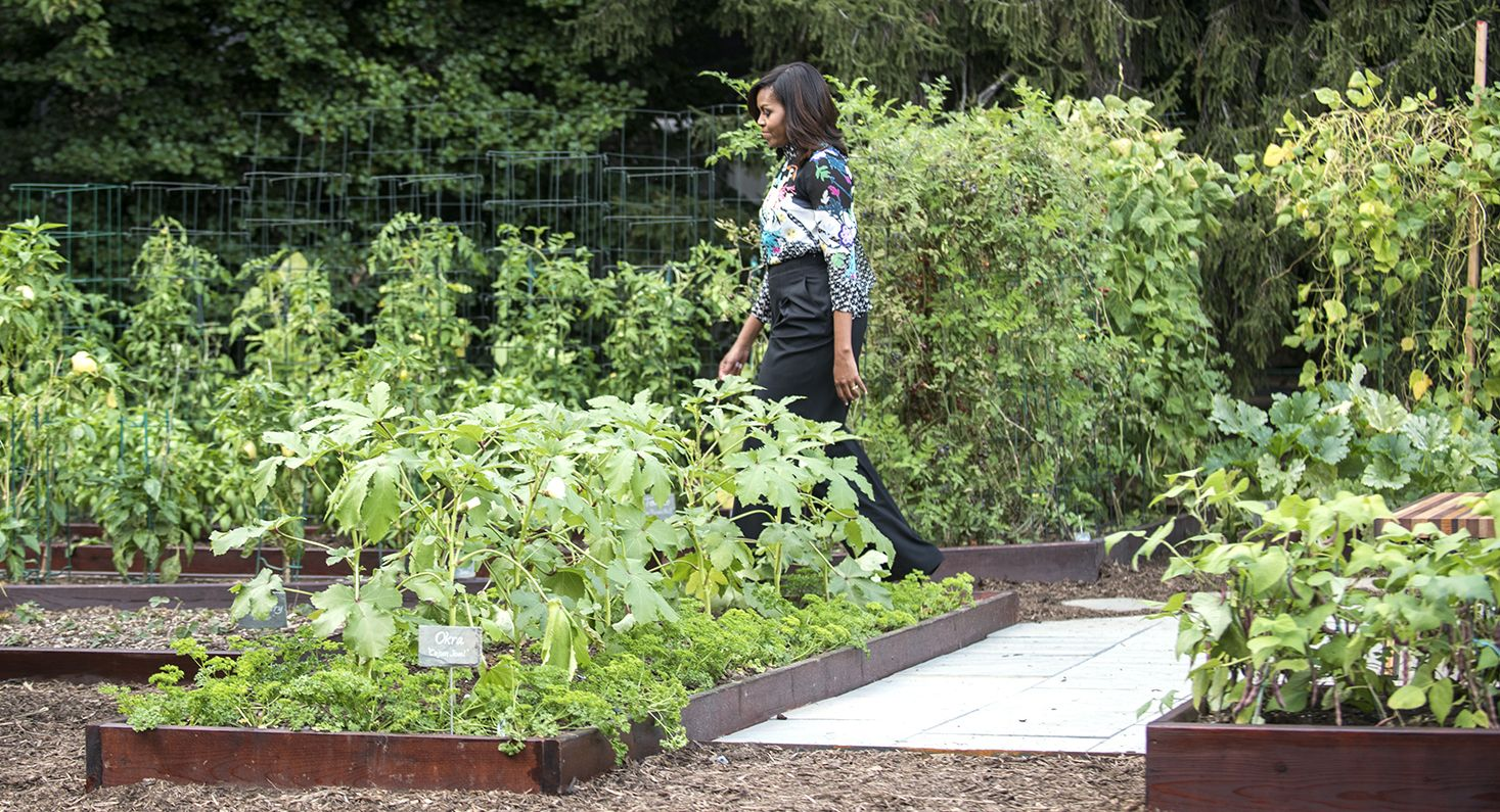 Michelle Obama sets her garden in stone White house