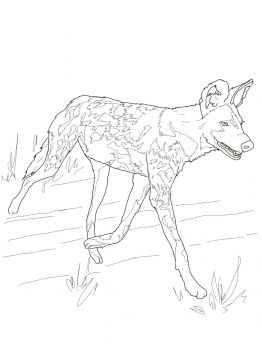 African Wild Dog Or Painted Hunting Dog Dog Coloring Page Wild Dogs