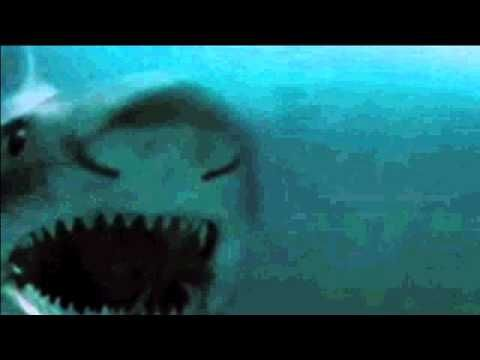 Saltwater crocodile vs Great white shark....animated, but still cool...Discovery Channel