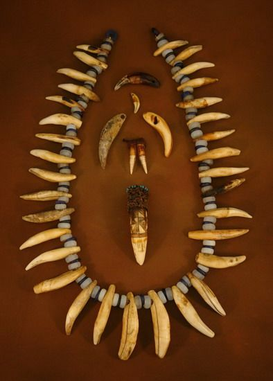 Africa lion and leopard tooth necklace from the congo the bead africa lion and leopard tooth necklace from the congo the bead in the middle is a crocodile tooth that has been decorated with glass beads and fiber mozeypictures Choice Image