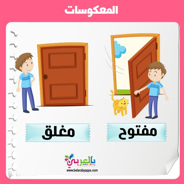 بطاقات تعليم المعكوسات للاطفال تعليم المتضادات للاطفال وسائل تعليمية حديثة بالعربي نتعلم Character Family Guy Fictional Characters