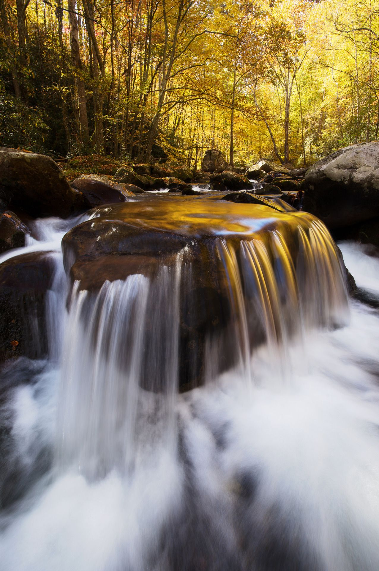 Braved some frigid waist-deep water in Great Smoky Mountains National Park (NC) for far too long to position my tripod close to this cool cascade.