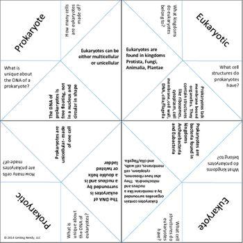 Cells - Prokaryotes vs Eukaryotes - Fortune Teller  Cootie Study - cootie catcher template