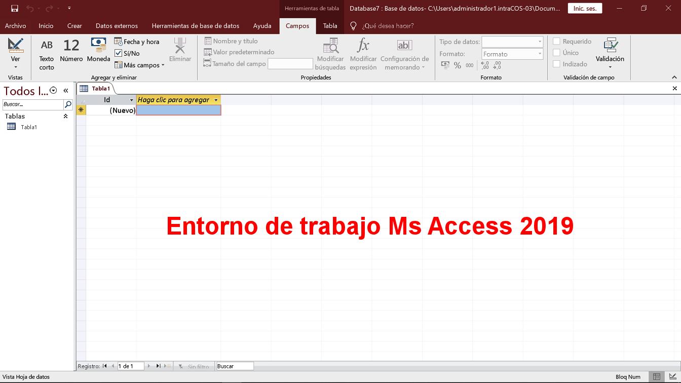 Entorno de trabajo de Ms Access 2019