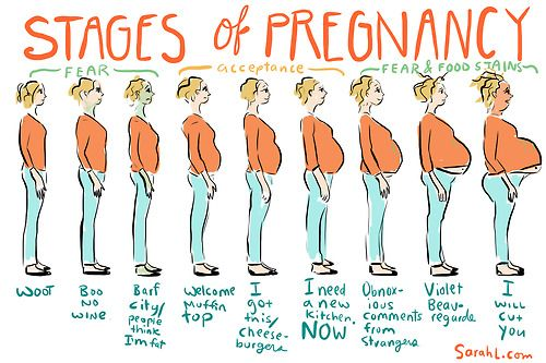 67014d0bde45237e692a89ead07eb276 stages of pregnancy pregnancy, stage and babies