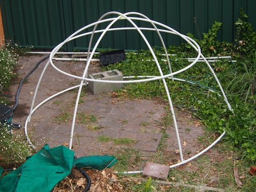 It S Been A Diy January From Gnocchi To A Chook Dome