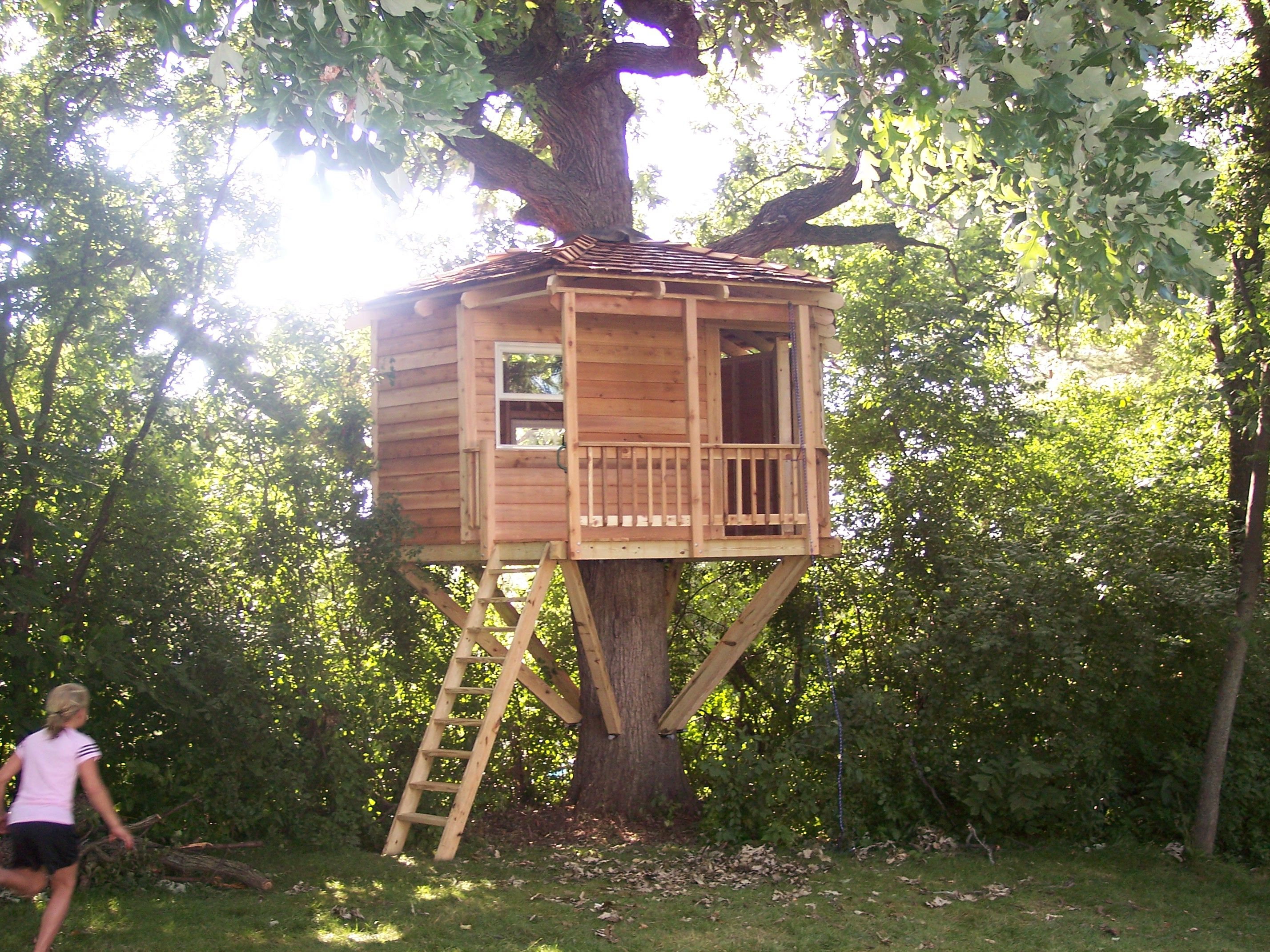 Chicago Illinois Treehouse Tree Houses By Tree Top Builders Tree House Tree House Plans Tree House Kids