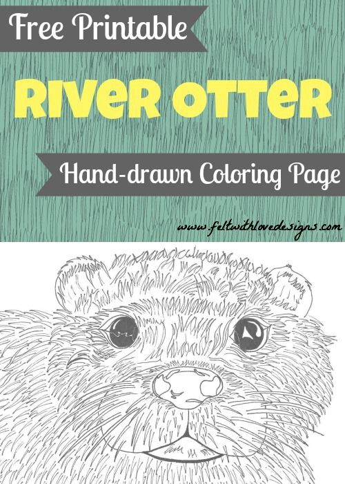 Free Printable Hand Drawn Wild Animal Coloring Page U2013 River Otter {Felt  With Love Designs}