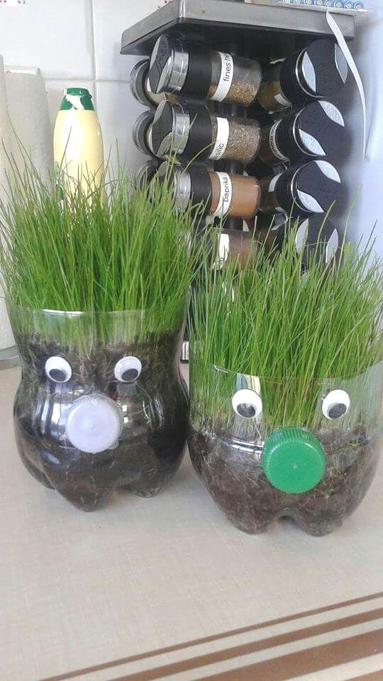 Garden Planters For Children