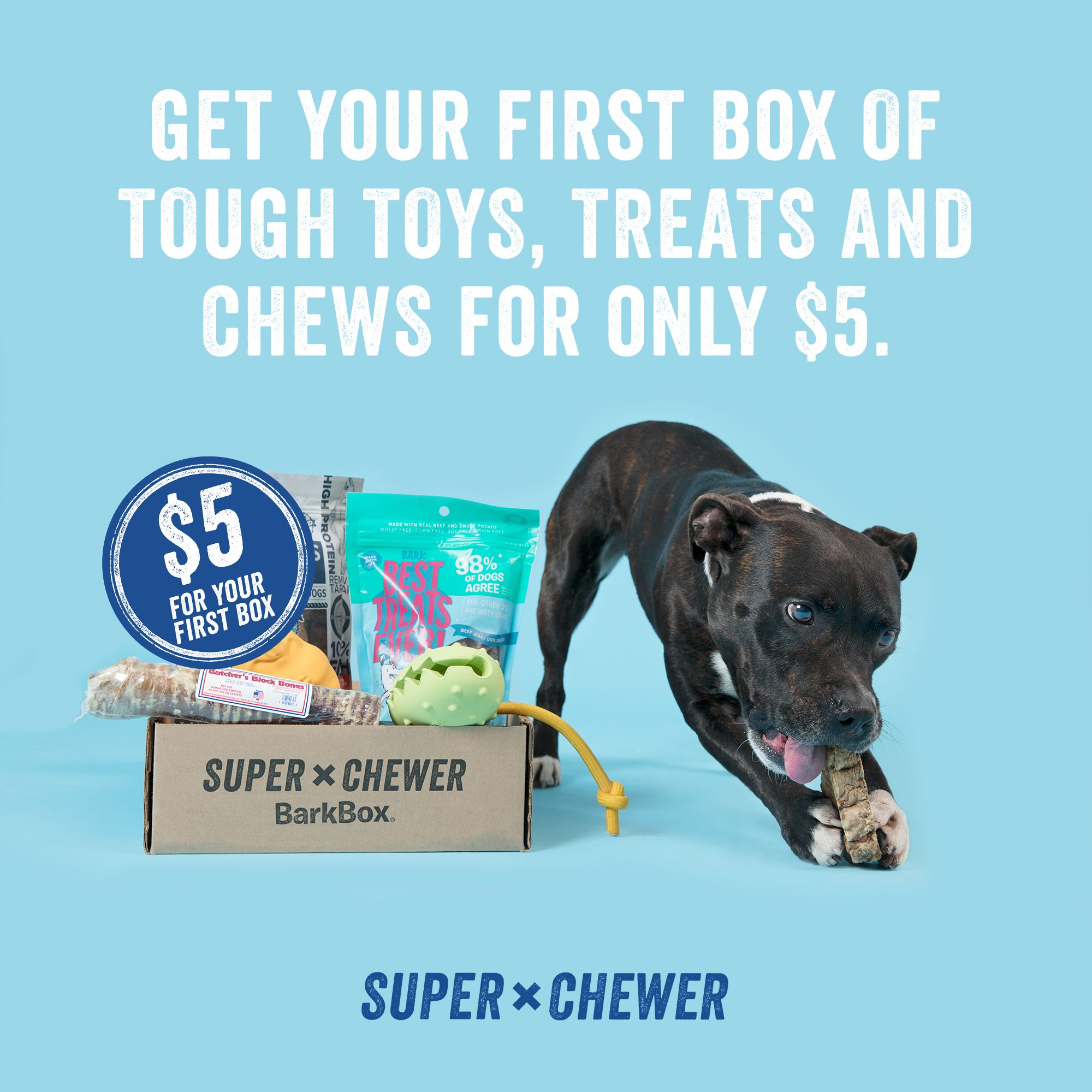 For just 5, you can get your dog a box full of tough toys