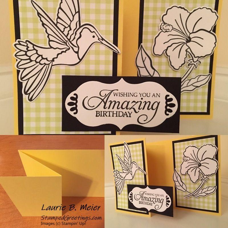 hummingbird bundle  zfold card design  simple magic