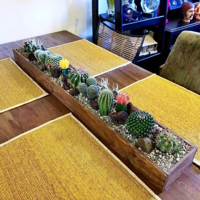 decoraçao para mesa da sacada | cactus | Pinterest | Plants, Cactus and Succule... - ชุลีพร อ่างแก้ว #cactuswithflowers