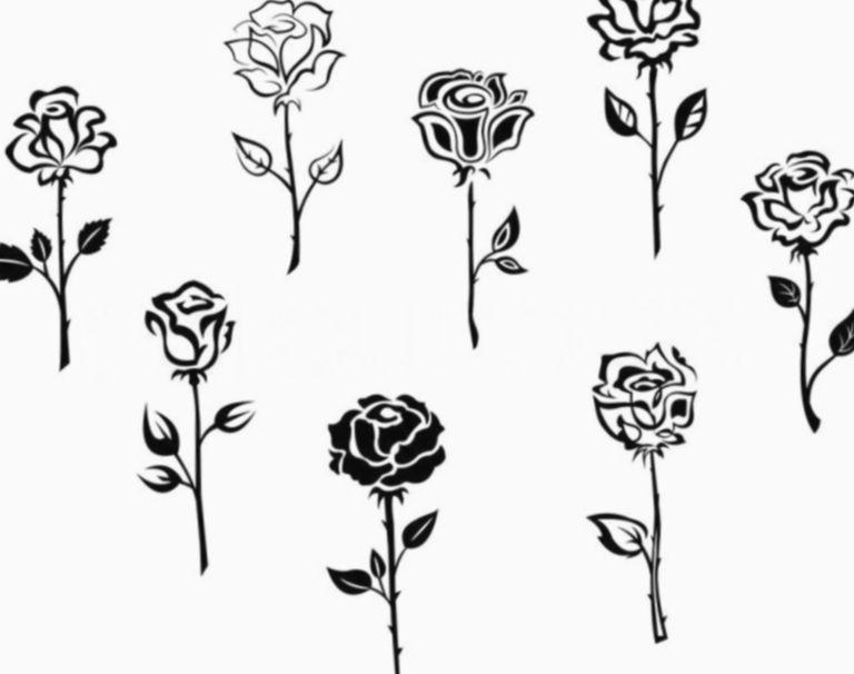 Rose Tattoo Schwarz Und Weiss Umrisse Schwarz 1